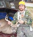 Norfork Lake Deer 2